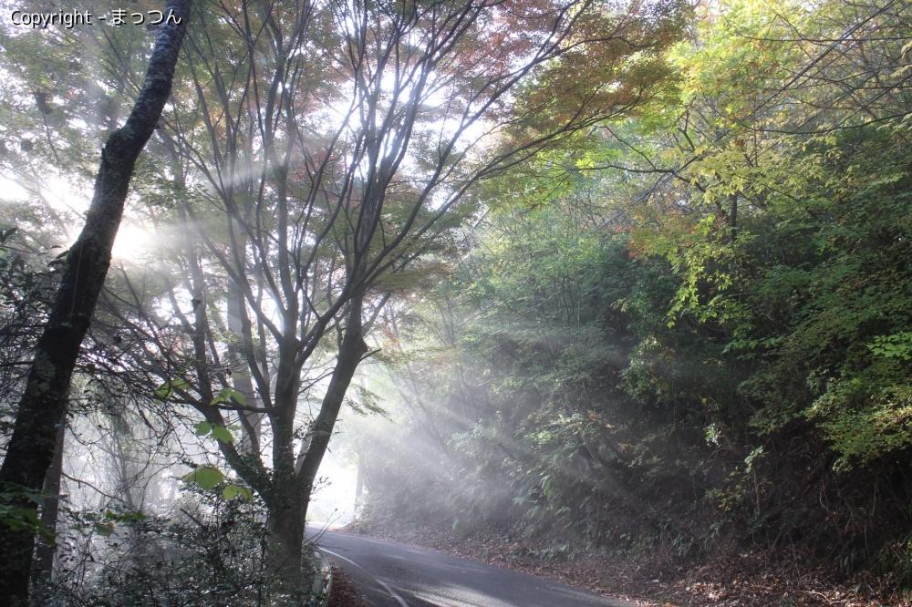 亀岡の冬の夜明け