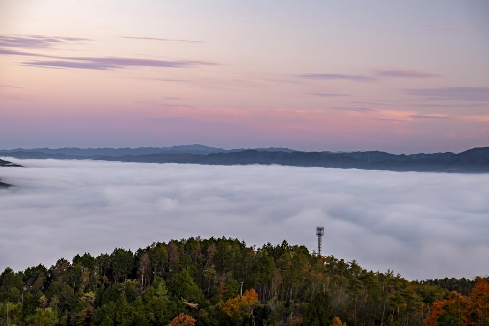 秋の霧テラスからの雲海