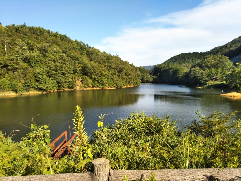 亀岡の池で散歩