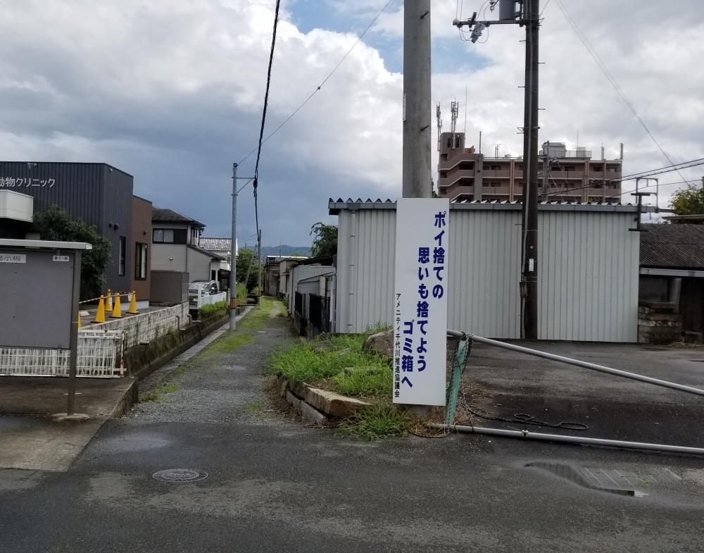 千代川の小道